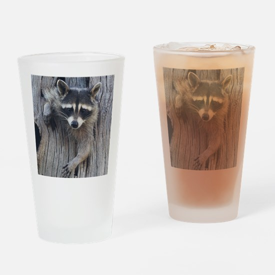 Raccoon in a Tree Drinking Glass