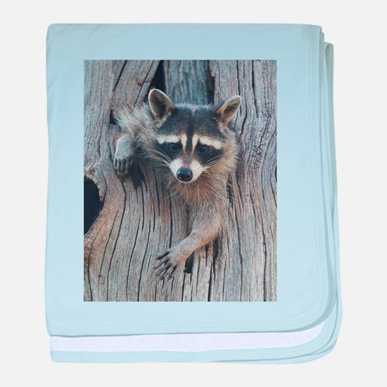 Raccoon in a Tree baby blanket