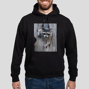 Raccoon in a Tree Hoodie (dark)