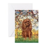 Spring and Ruby Cavalier Greeting Cards (Pk of 20)
