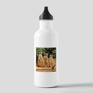 Meerkat_2015_0101 Stainless Water Bottle 1.0L