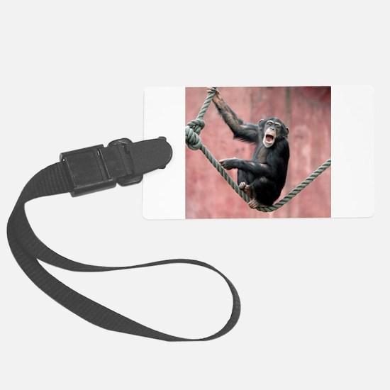 Chimpanzee001 Luggage Tag