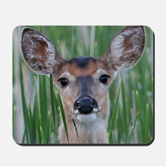 Deer in the Cattails Mousepad