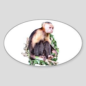 Monkey Business - Oval Sticker