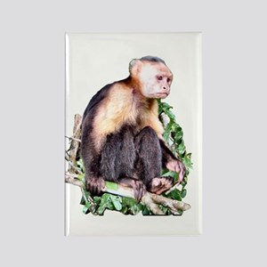 Monkey Business - Rectangle Magnet