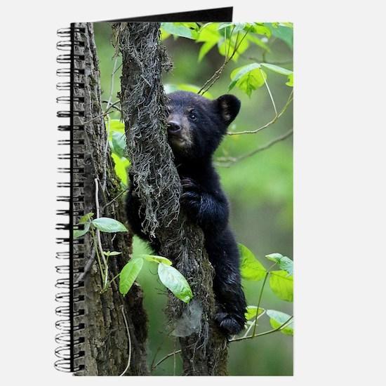 Black Bear Cub Journal