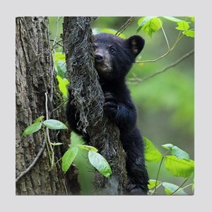 Black Bear Cub Tile Coaster