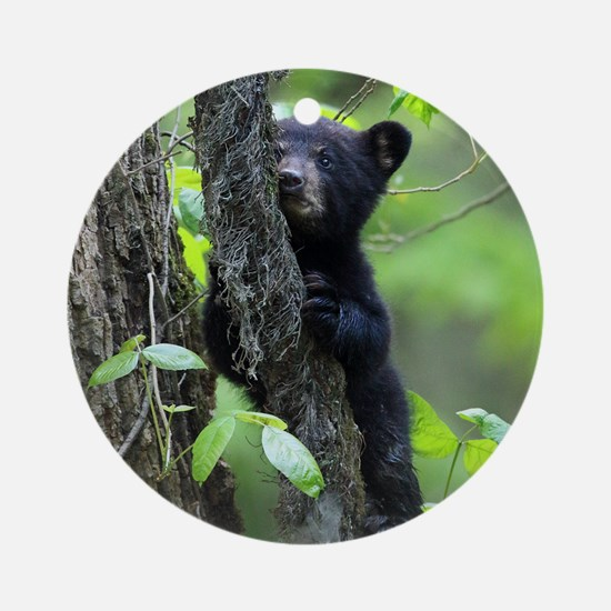 Black Bear Cub Round Ornament
