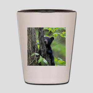 Black Bear Cub Shot Glass