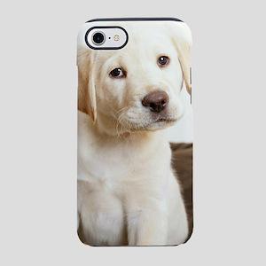 Cute Golden Retriever Puppy iPhone 8/7 Tough Case