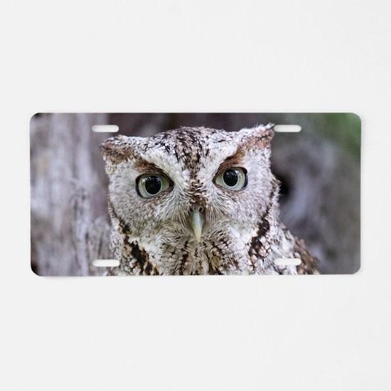 Owl Aluminum License Plate