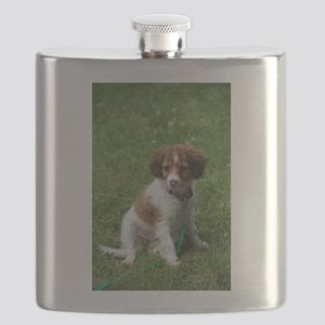 kooikerhondje puppy wet Flask