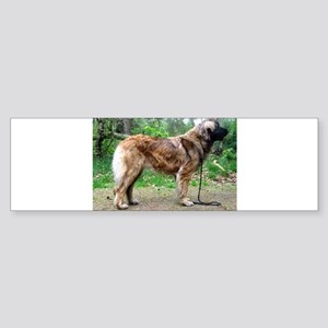 leonberger full Bumper Sticker