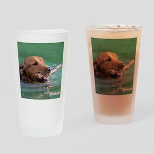 Happy Retriever Dog Drinking Glass