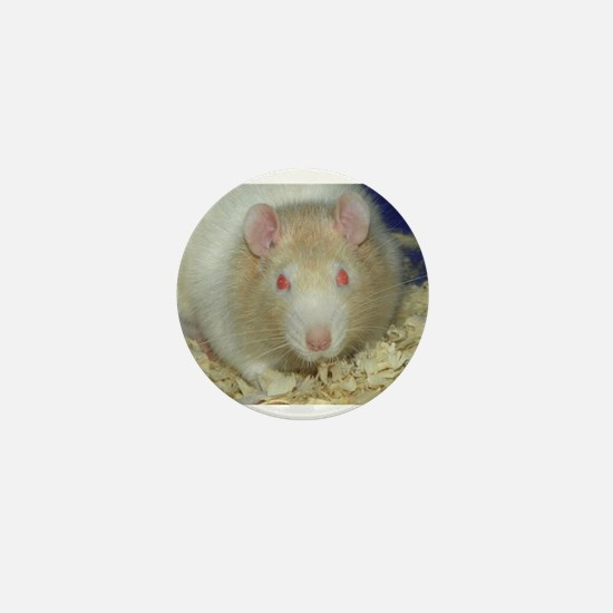 Mr. Rat Mini Button