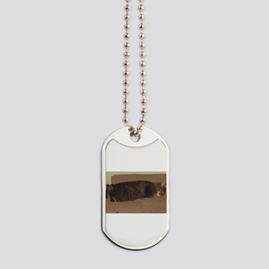 manx sleeping Dog Tags