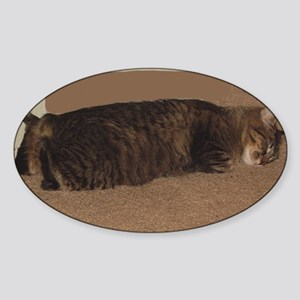 manx sleeping Sticker