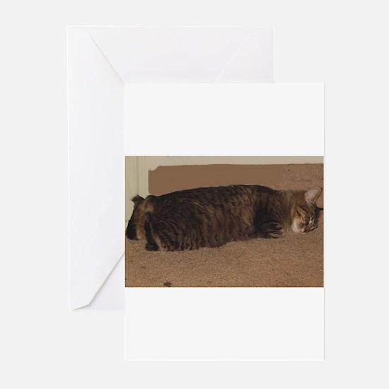 manx sleeping Greeting Cards