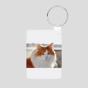 norwegian forest cat orange white Keychains