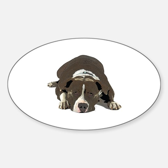 Cute Pitt bull Sticker (Oval)