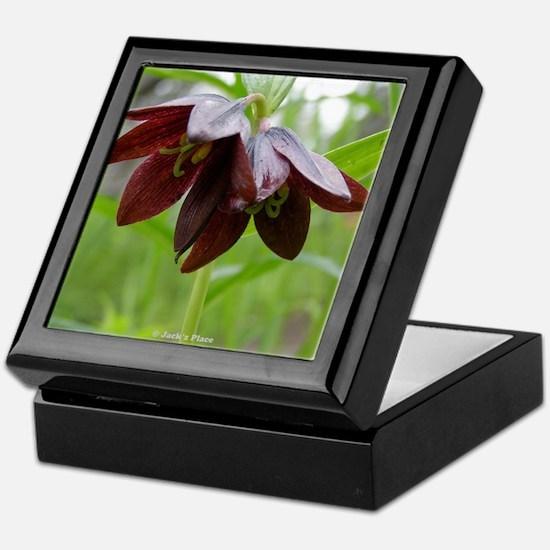 Chocolate Lily Keepsake Box