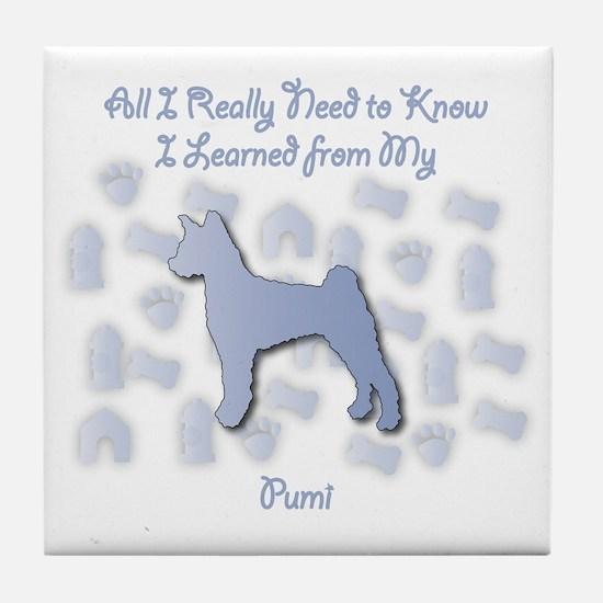 Learned Pumi Tile Coaster