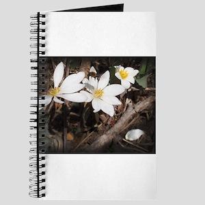 Bee Flying Over Flower Journal