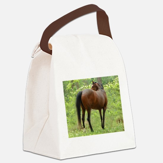 Beautiful Mare Canvas Lunch Bag