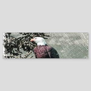 rustic trees american eagle Bumper Sticker