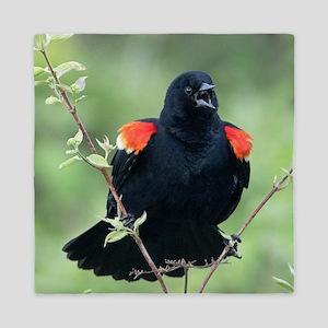 Red-Winged Blackbird Queen Duvet