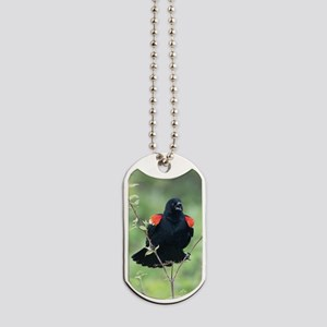 Red-Winged Blackbird Dog Tags