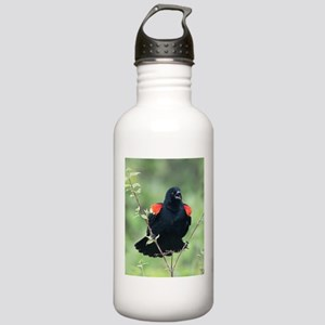 Red-Winged Blackbird Stainless Water Bottle 1.0L