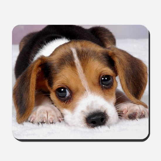 Cute Puppy Mousepad