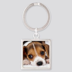 Cute Puppy Keychains