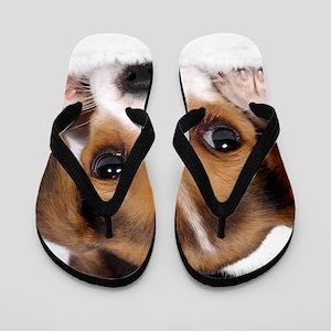 Cute Puppy Flip Flops