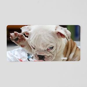 Funny English Bulldog Puppy Aluminum License Plate