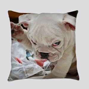 Funny English Bulldog Puppy Everyday Pillow
