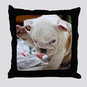 Funny English Bulldog Puppy Throw Pillow