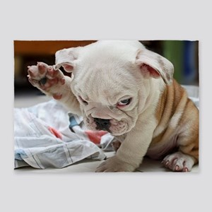 Funny English Bulldog Puppy 5'x7'Area Rug