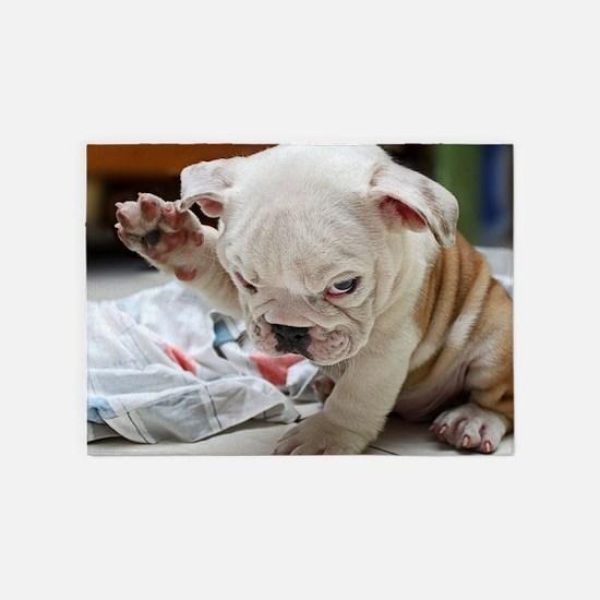 Funny English Bulldog Puppy 5'x7'Area Rug