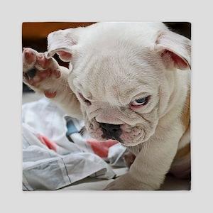 Funny English Bulldog Puppy Queen Duvet