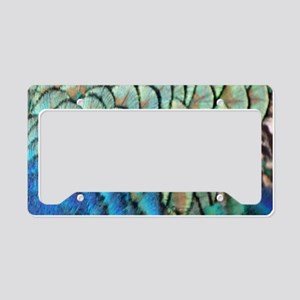 colorful peacock feathers License Plate Holder