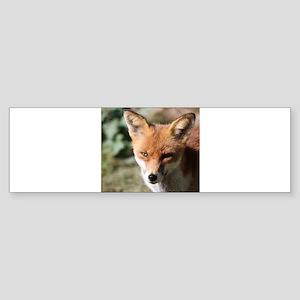 Fox001 Bumper Sticker