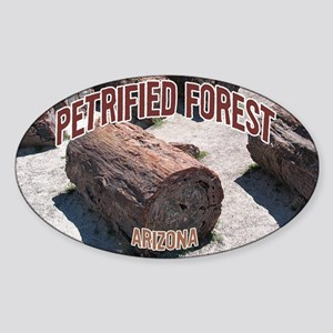 Petrified Forest National Park Oval Sticker