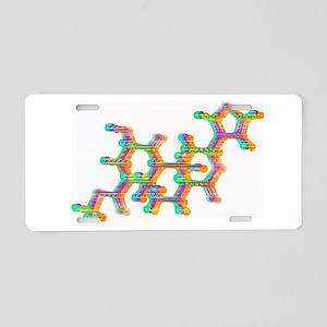 Salvia Aluminum License Plate
