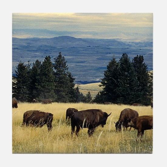 National Parks Bison Herd Tile Coaster