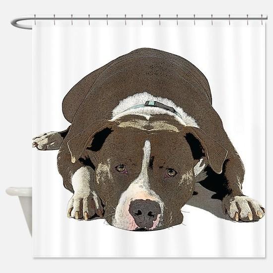 Sleepy Pit Bull look ahead Shower Curtain