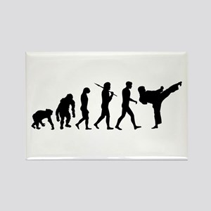 Martial Arts Evolution Rectangle Magnet