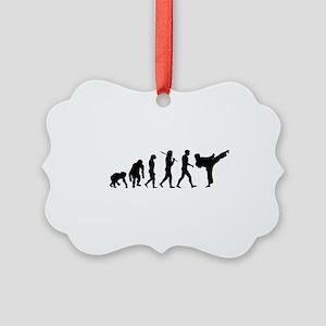 Martial Arts Evolution Picture Ornament