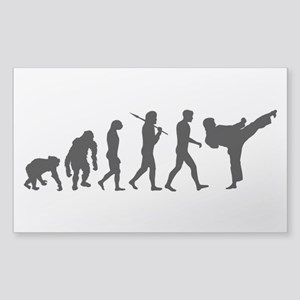 Martial Arts Evolution Sticker (Rectangle)